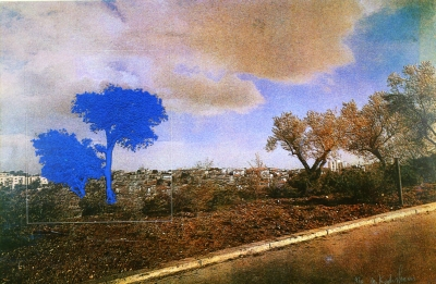 Landscape and Nature: Contemporary Israeli Prints from the Collection of The Israel Museum, Jerusalem