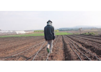 Agro-Art, Contemporary Agriculture in Israeli Art