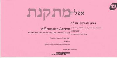 Affirmative Action - Works from the Museum Collection and Loans