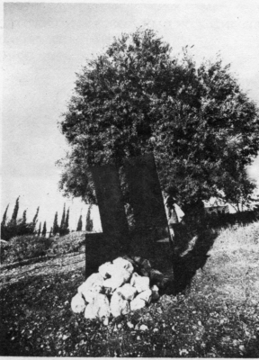 Igael Tumarkin: Definition of an Olive Tree