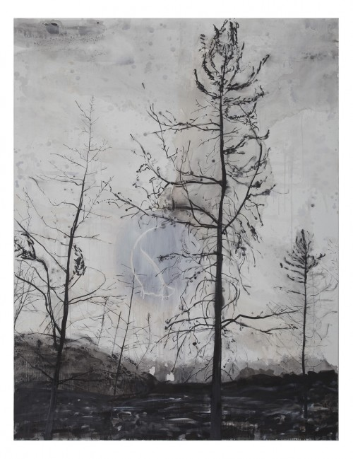 כוויות יער, אוהד שאלתיאל, 2012