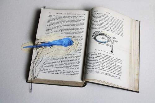 """מורן שוב, """"The Ducts of Which Open, או תעלת הדמעות"""" טופוגרפיה באנציקלופדיה אנטומית-פיזיולוגית מתוך סדרת טופוגרפיות בספרים ובמחברות, יפו, יולי 2012 – ינואר 2014 הדפסת דיו על FineArt"""