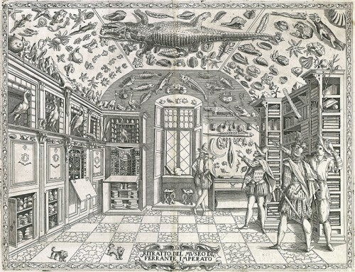 """תחריט מהספר """"Dell'Historia Naturale"""" (""""על ההיסטוריה של הטבע"""") מאת פרנטה אימפרטו, שיצא לאור בנפולי ב-1599. הציור הראשון שתיאר חדר פלאות"""